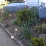 front-flower-beds-cleanup-camden-county-nj
