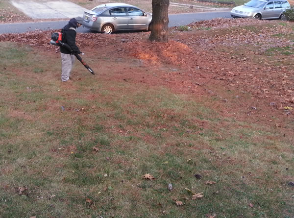 nj-leaf-blowing-service