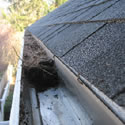 Gutter Cleanings & Repair
