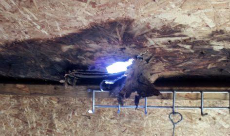Shed Roof Repair Leaks