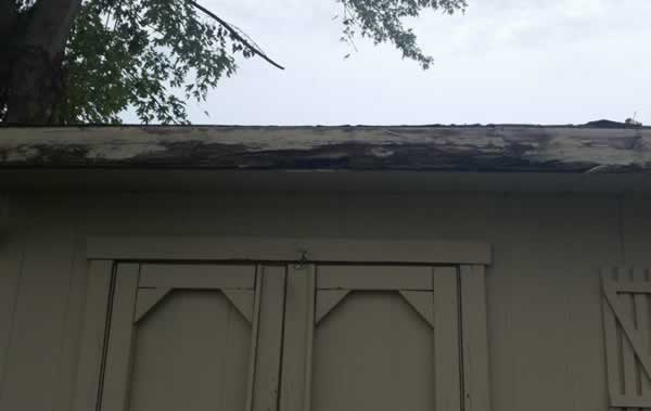 shed-repairs-wood-replacement-nj