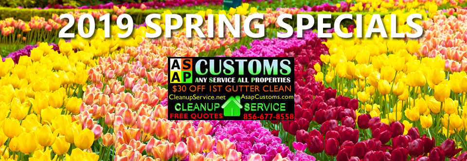 Cleanup Service South Jersey Gutter Cleaning Spring 2019 Leaf Home Service Maintenance Specials