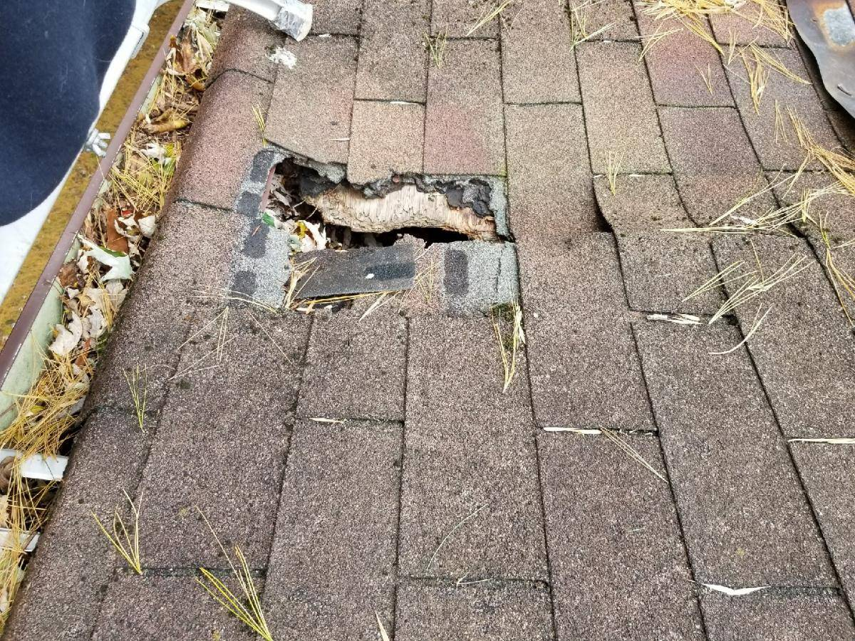 nj-fix-hole-in-roof