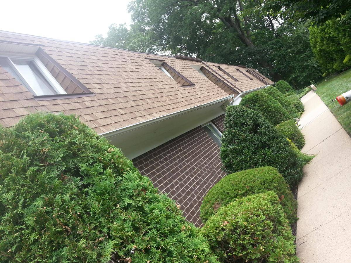apartment-hedges-trimmed-pruned-nj