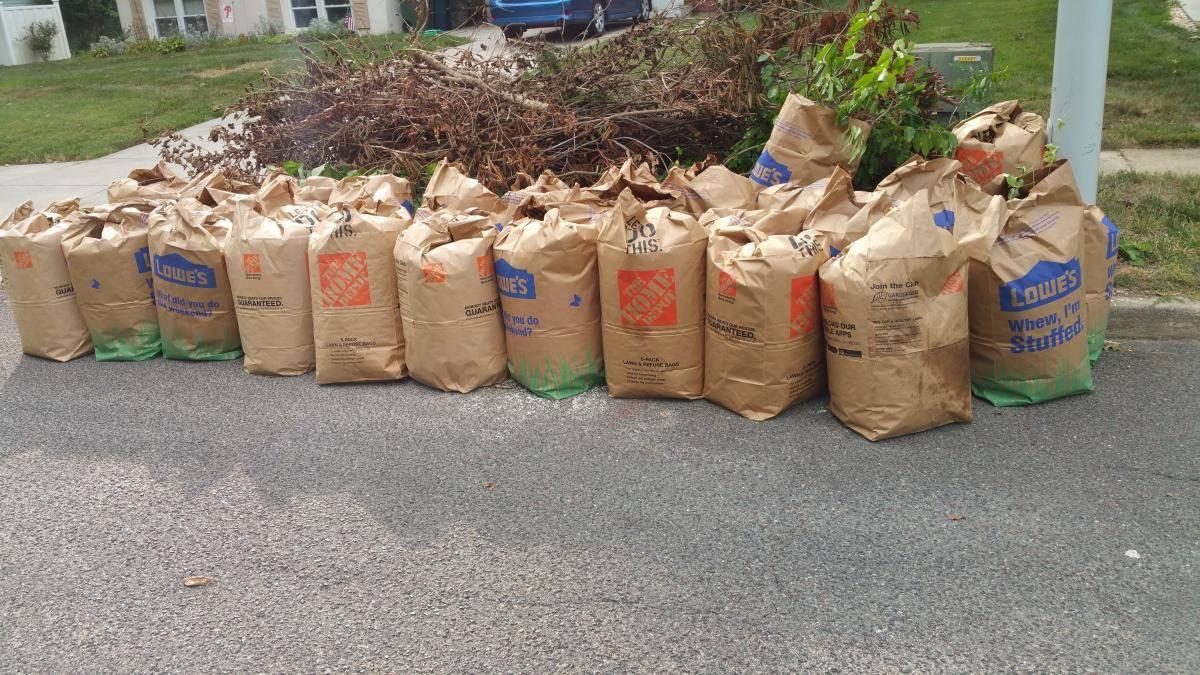nj-bagged-leaves-cleanup-teams