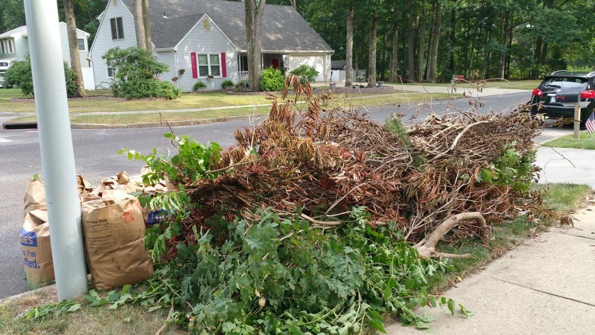 nj-property-maintenance-cleanups