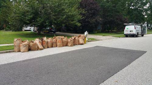 bagged-leaf-cleanups-south-jersey