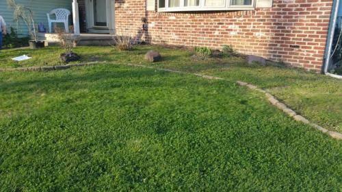 blackwood-nj-new-flowerbed-before