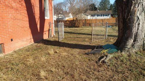 commercial-property-leaf-removal-cleanup-nj