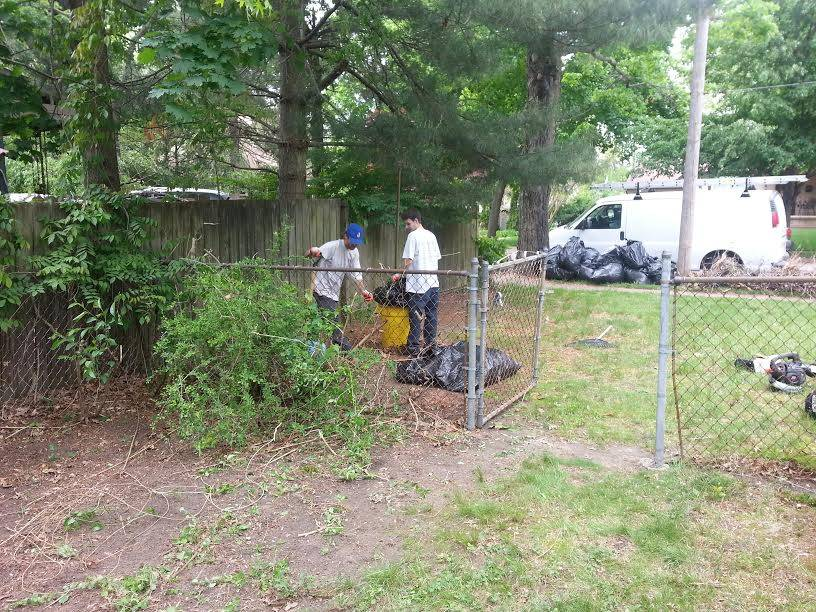yards-cleanups
